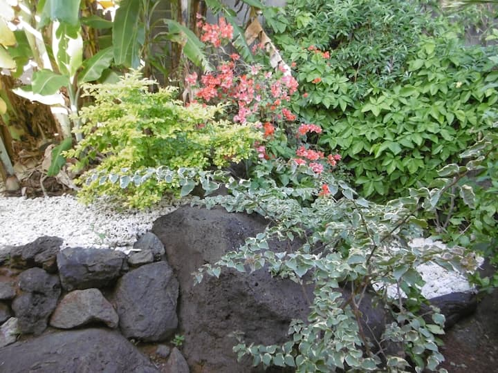 Magnifique T2 avec jardin au coeur de Terre Sainte