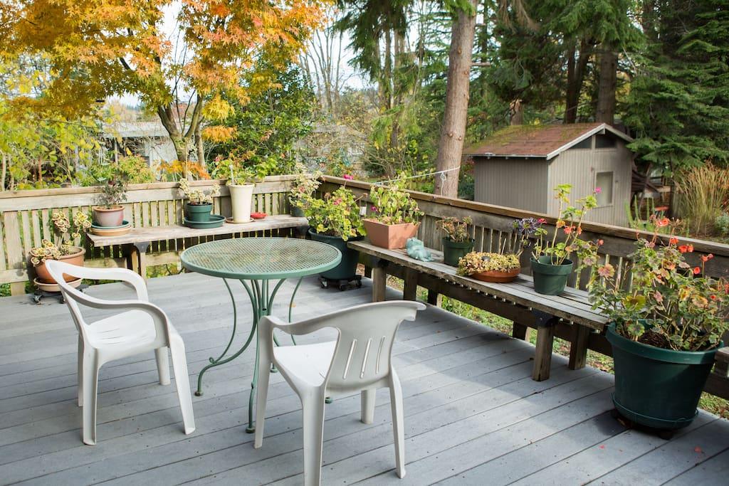 A lovely outdoor patio to enjoy the backyard