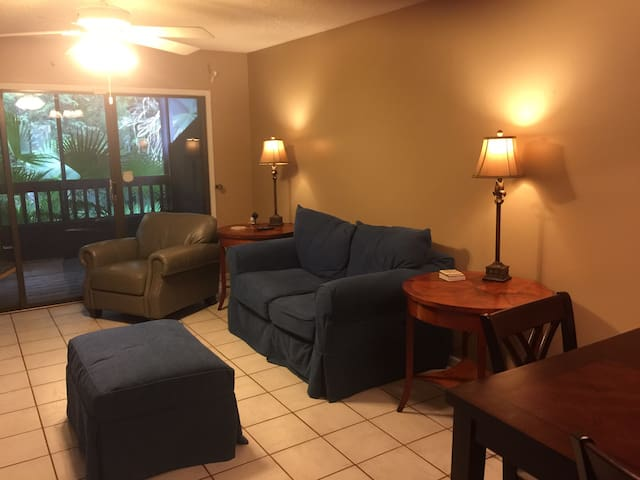Beautiful Condo for 4-6 month  rental only