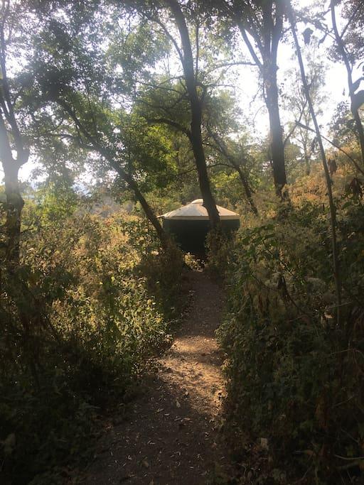 Sunny yurt