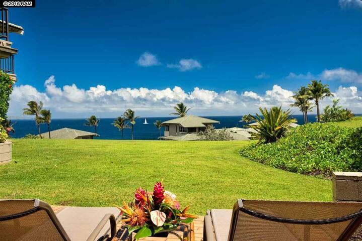 Luxury Oceanview Kapalua Villa