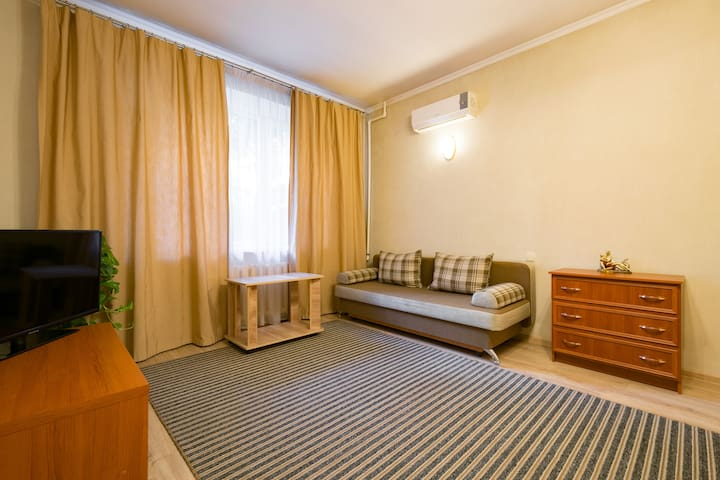 Spacious 1room apt. in the centre