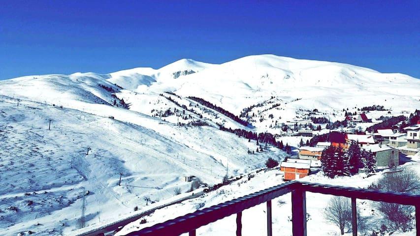 Skii Center View