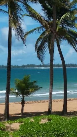 beautiful beach within feet away