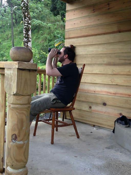 Stewart bird watching.