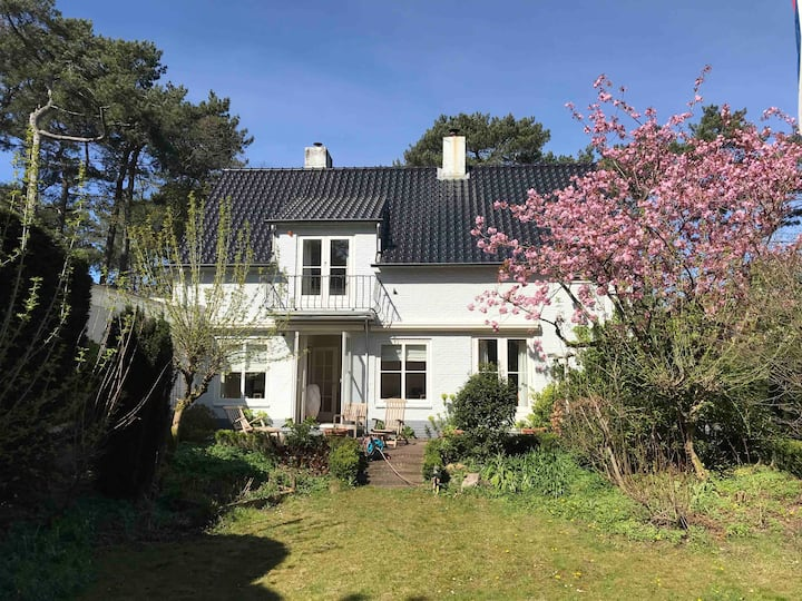 Beautiful villa 10 min from beach, 25 to Amsterdam
