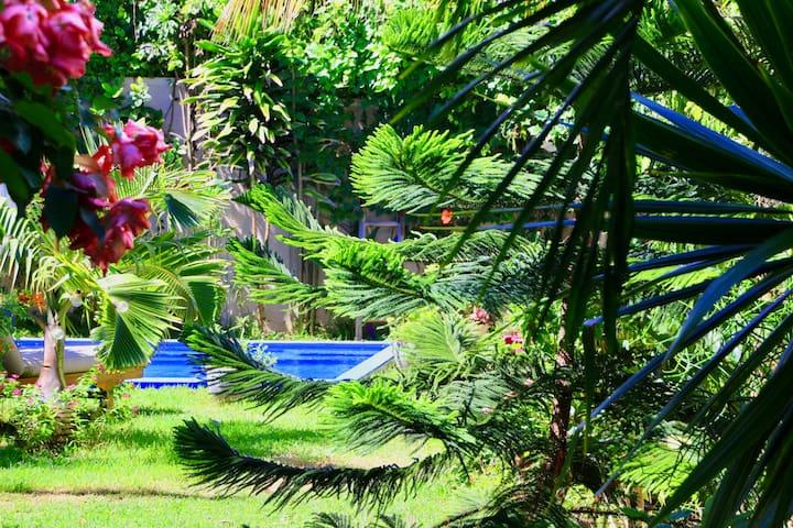 Vue jardin et piscine
