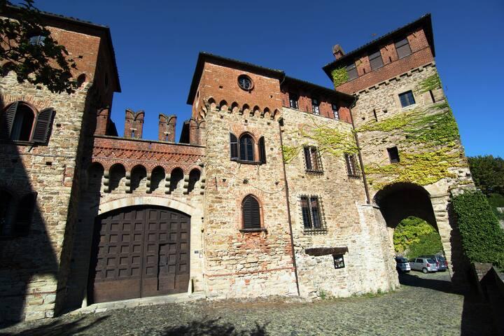 Château historique de Tagliolo Monferrato dans les vignes
