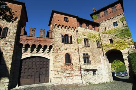 Historic Castle in Tagliolo Monferrato Amidst Vineyards