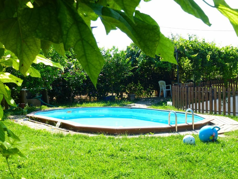 Pool and back garden
