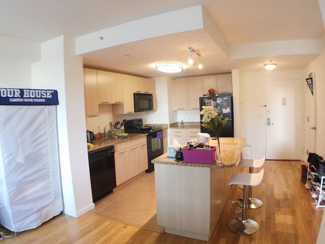 Luxury 1BR APT w/ 1 queen size bed and 1 airbed - White Plains - Leilighet