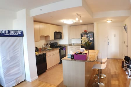 Luxury 1BR APT w/ 1 queen size bed and 1 airbed - White Plains - Διαμέρισμα