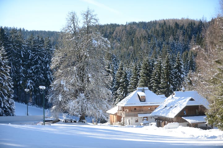 Holiday Alp Kreuth6 - House Enzian (total)