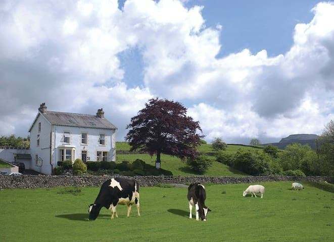 Thorngarth Country Guesthouse - Yorkshire Dales. - North Yorkshire - Pension