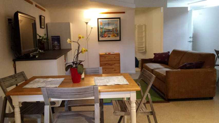 New Garden Apartment minutes from DC - Arlington - Appartement