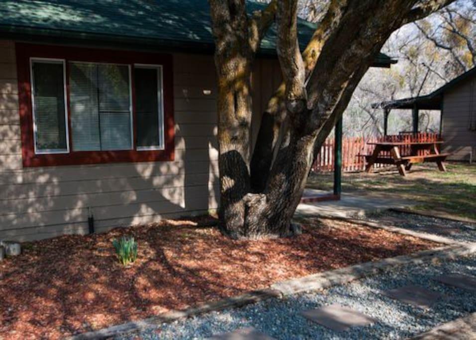 Cedar built vintage cabin, completely updated.