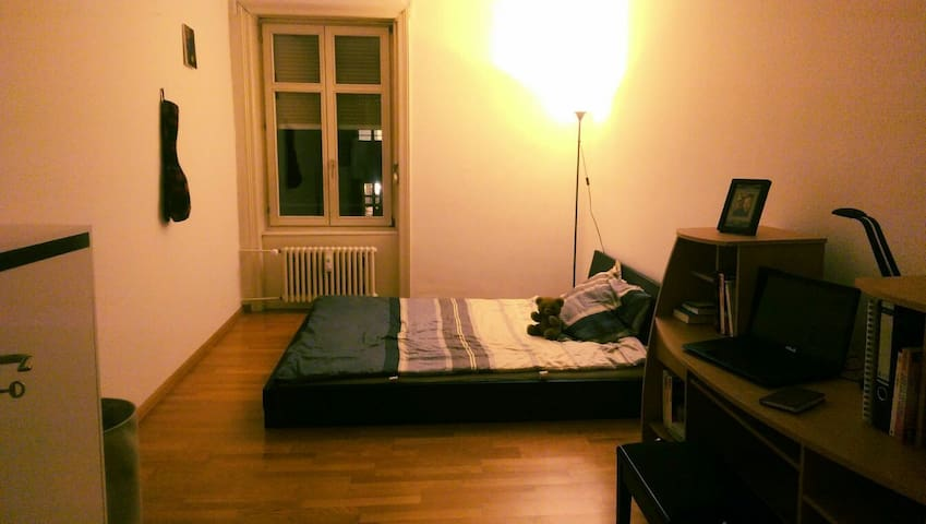 Private room near to Messeplatz! - Basilea - Appartamento