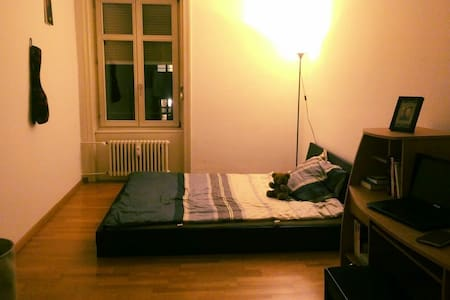 Private room near to Messeplatz! - Basel - Apartament