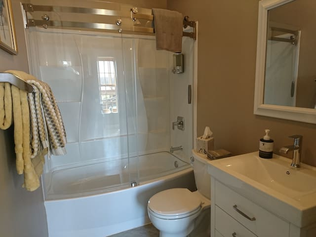 The bathroom is supplied with towels,  makeup remover wash cloth, bath mat, rug, shampoo, conditioner, and body wash.