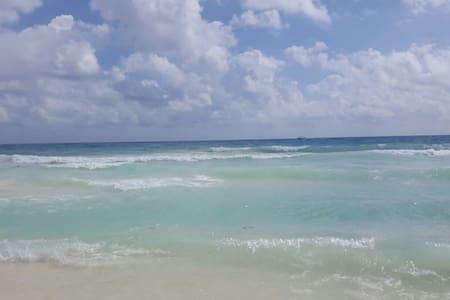 Bedroom+Beach Club+2bikes+2snorkels - Playa del Carmen - Apartament