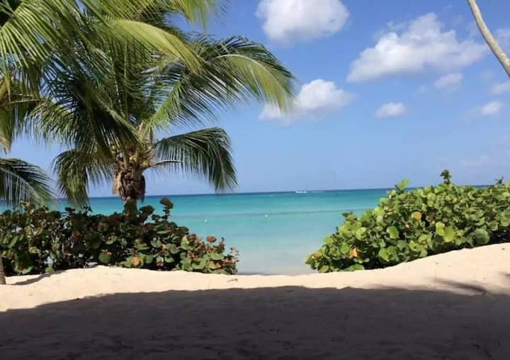 Cadaqués Caribe Bayahibe  1bd apt terrace sea view