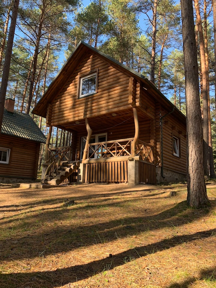 Shaulys forest house