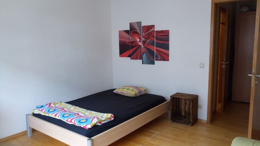 cozy room, great location, right by Hauptbahnhof - Heidelberg - Wohnung