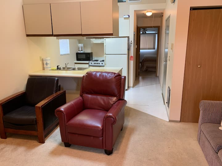 Lake Erie condo-GreenCove Resort @WildWings Marina