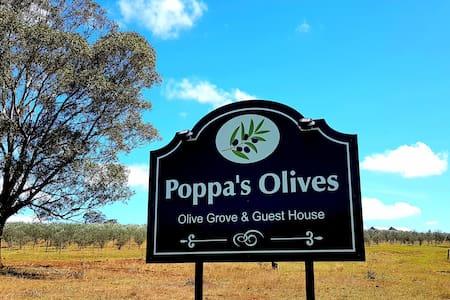 Poppa's Place @  Hunter Valley Farmstay