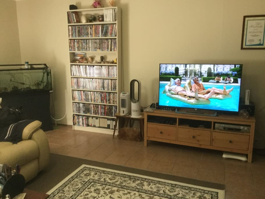 Spacious lounge room, Netflix, wifi, eclectic DVD collection