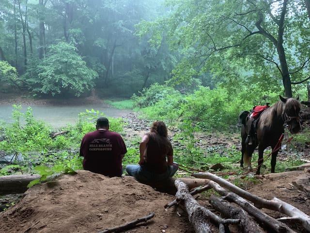 Bear Branch campground.  reserve RV spots  online