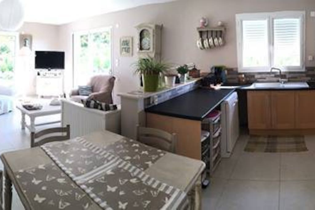 Grand espace de vie de 50m2. Cuisine équipée, salon TV, table pour manger, 2 baies vitrée sut terrasse avec vue et les pieds dans les vignes bio