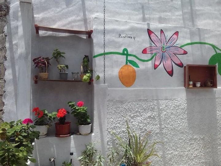 Flower's house