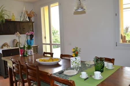 Il Giardino B&B - Castelvetro di Modena - Bed & Breakfast
