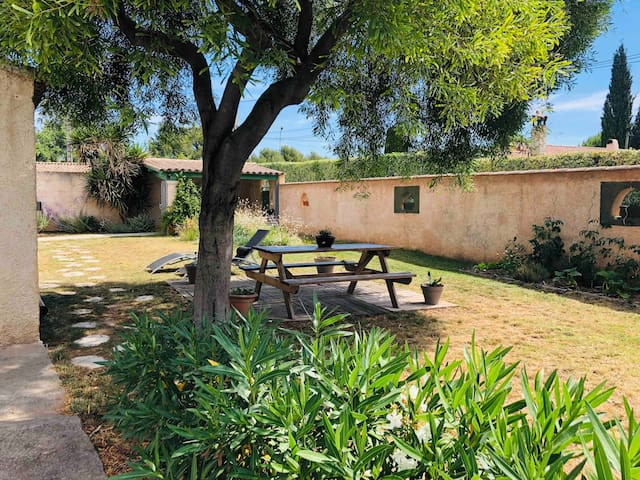 Ceci est votre espace ! Une table et des transat à l'ombre d'un mimosa. Tomates cerises, aromates et autres légumes de saisons sont aussi à votre disposition !