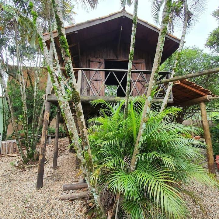 Ecocentro Brasil - Glamping - Casa da Árvore