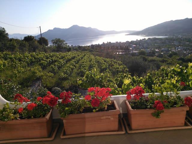 Evia Edipsos Grèce (île d'Eubée)