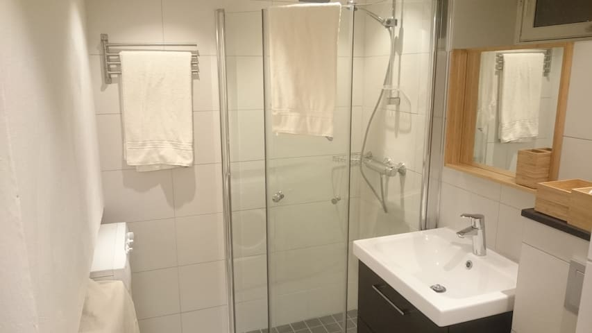 New&nice flat, central&quiet, area, parking - Oslo - Apartment