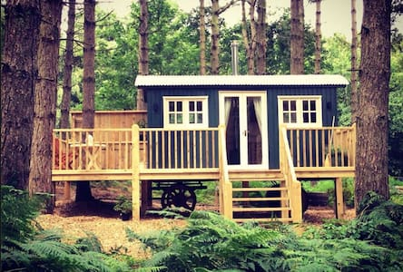 Enchanted Woodland Glamping in Norfolk