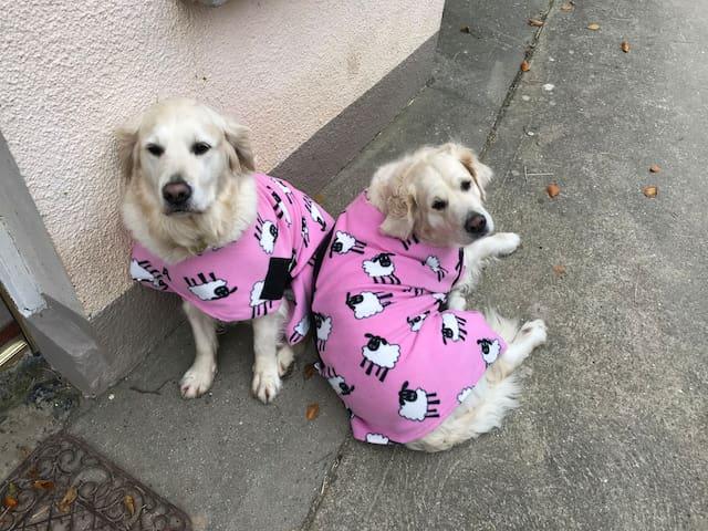 Molly and Tessa