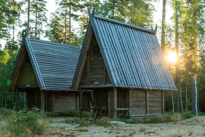 Viking house (Freja)
