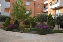 The territory of the house is landscaped and well maintained.
