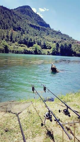 Ebrofishing