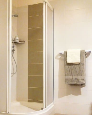 A spacious and modern shower corner.