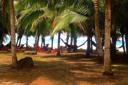Playa 506 - Hostel Resort on the Beach - Puerto Viejo de Talamanca
