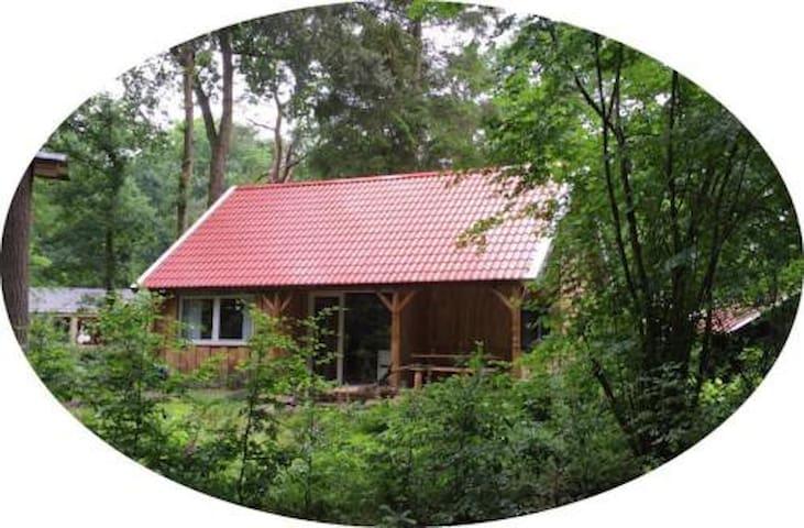 Nieuw boshuisje in gezellig Zuidlaren; rust&ruimte - Zuidlaren - Cabaña