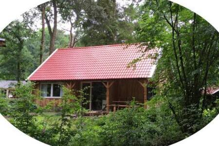 Meivakantie; nieuwe boshuisje te Zuidlaren - Zuidlaren - Ξυλόσπιτο