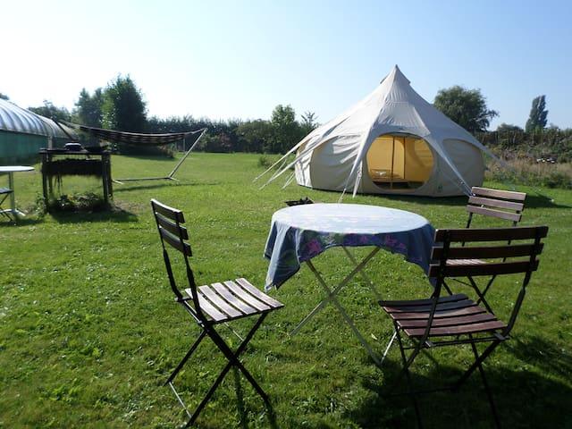 Romantic Family Tent - Schellinkhout - Telt