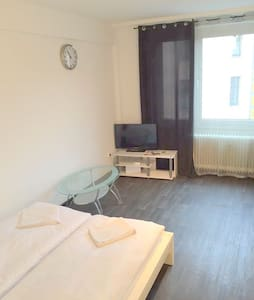 Cozy Place close to MESSE, CENTER, TRAIN STATION - Francoforte