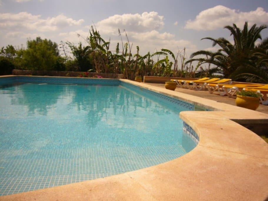 Pool und Sonnenliegen